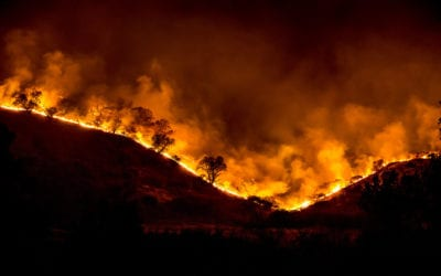 Get Your Property Bushfire Ready with this Guide